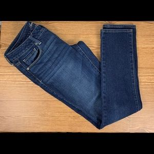 American Eagle Stretch Blue Jean